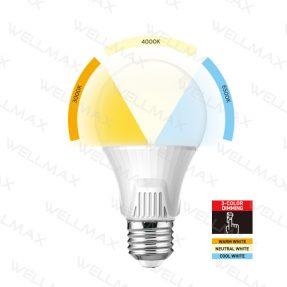 Segmented Color LED Bulb