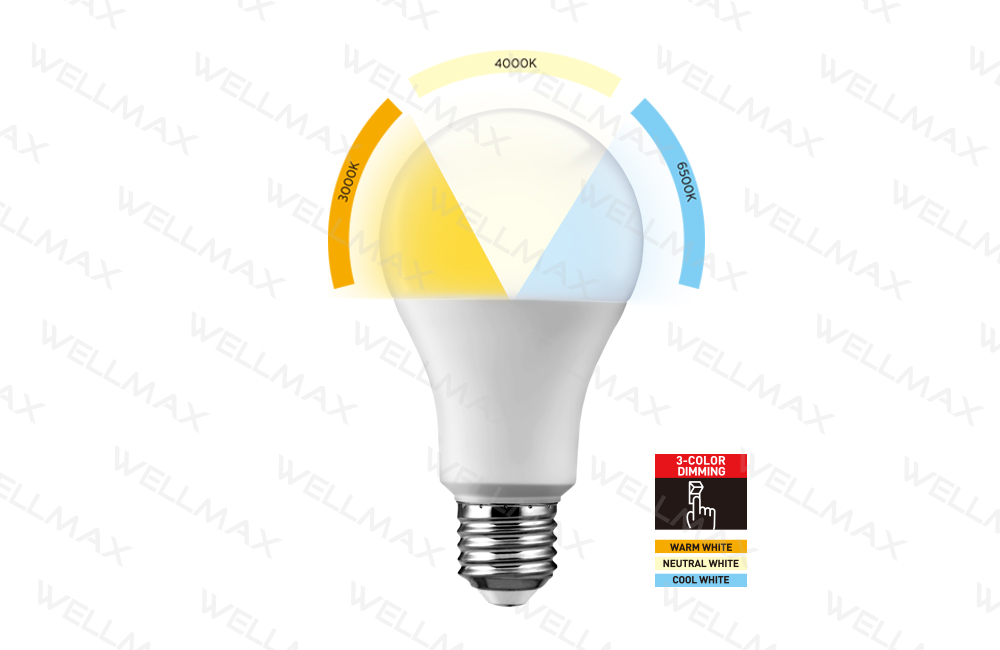 Segmented Color LED Bulb-Classic Series