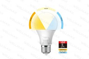 Segmented Color LED Bulb
